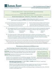 Business Development Job Description Resume by Business Development Job Description Resume Free Resume Example