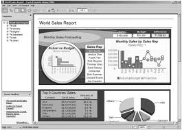 using crystal reports and sap bex in an sap bi environment