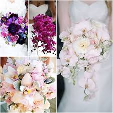 wedding flowers orchids loveliest orchids wedding bouquets looks fresh and majestic which