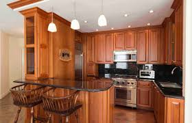 efficiency kitchen design remarkable efficiency kitchen photo design inspiration surripui net