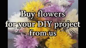 Bulk Flowers Bulk Flowers For Your Diy Project Youtube