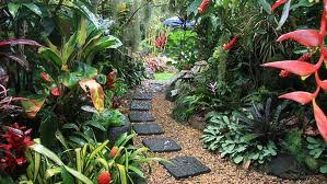 Small Tropical Garden Ideas Tropical Garden Landscape Design Ideas Tropical Landscaping