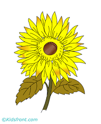 Sunflower Coloring Pages For Kids To Color And Print Sunflower Coloring Page