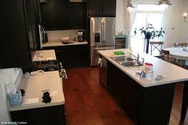 chalk paint kitchen cabinets step by step u2014 desjar interior