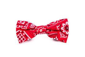 bandana bow bandana bow tie doggone stylish