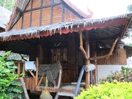 thailand phi phi island u2013 proper paradise asha u0026 ryan