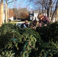 is bilo open on thanksgiving papa jon u0027s christmas trees home facebook