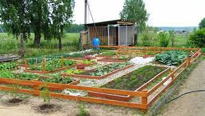 Small Backyard Vegetable Garden by Garden Plot Design Aboidea Us