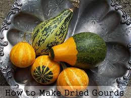 how to make dried gourds