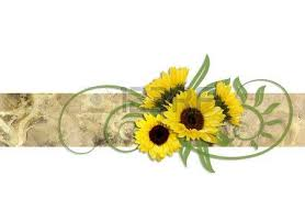 decoration of sunflowers on an ornamental ribbon stock photo