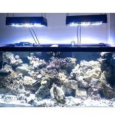 22 best led aquarium lights images on aquarium led