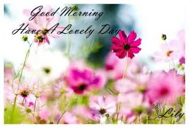 flowers morning quotes greetings wendys liza gm