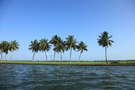 kerala tour packages best sightseeing travel tourism deals