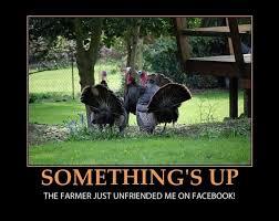 Turkey Day Meme - funny thanksgiving memes thanksgiving meme 2018 turkey memes
