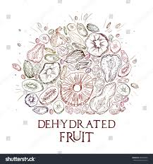 editable fruit dehydrated fruit shape pattern engraved stock vector