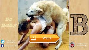 funny dogs compilation try not to laugh funny pet videos fluffy