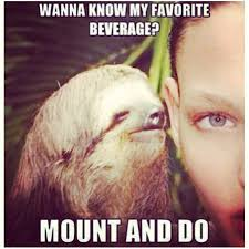 Sloth Fitness Meme - beautiful 13 best dirty sloth images on pinterest wallpaper site