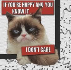 19 Awesome Grumpy Cat Christmas - grumpy cat total party pack grumpy cat party supplies