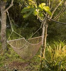 a net hammock in the backyard stock photo picture and royalty