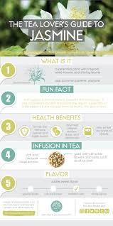 Jasmine Tea Flowers - health benefits of jasmine flowers articles purify tea