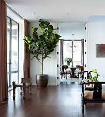 contemporary house with hardwood floors and house plant watering