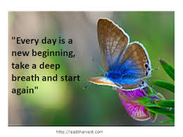 Wedding Quotes New Beginnings Every Day Is A New Beginning Take A Deep Breath And Start Again