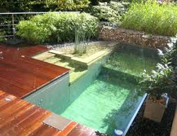 Ideas For A Small Backyard How To Build A Small Pool In Backyard Inground Pool In Small