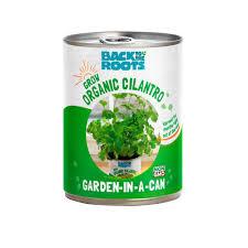 herb plants edible garden home depot