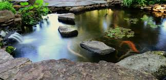 Patio Pond by Carter U0027s Nursery Pond And Patio Inc U2013 From Dream U2026 To Reality