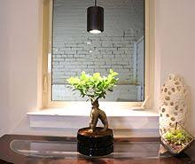 Grow Lights For Plants Grow Light Wikipedia