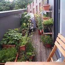 34 best balcony garden images on pinterest landscaping