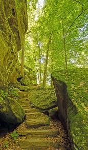 best 25 paths ideas on pinterest forest path forests and where
