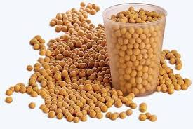 alimentazione ricca di proteine i 10 alimenti pi禮 ricchi di proteine tanta salute