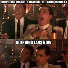 Funny Miami Dolphins Memes - dolphins fans after beating the patriots week 1 dolphins fans now