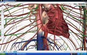 App For Anatomy And Physiology Best 3d Human Anatomy Software For Biology Students Youtube