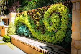 living walls green plant and vertical garden walls furniture how