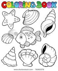 image coloring book seashells fish