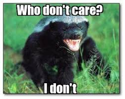 Honeybadger Meme - to keep the snakes and another annoyance away toys i want