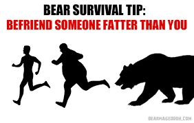 bear tips album on imgur