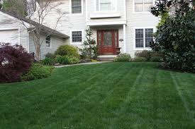 lawn care mcnaughton u0027s garden center