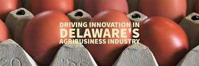 Delaware top travel blogs images Invest global delaware state of delaware jpg