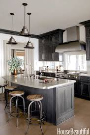 Dark Kitchen Ideas Kitchen Design Marvelous Cool Dark Cabinets Wood Cabinets