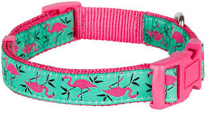 blueberry pet prints collar medium pink flamingo on