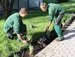 garten und landschaftsbau garten und landschaftsbau calendario