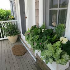 window boxes u2014 mohr gardening