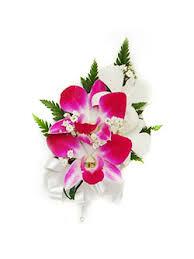 orchid corsage corsage shop