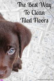 the best way for you to clean tiled floors at home