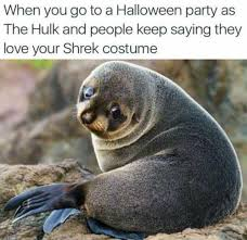 Halloween Party Meme - dopl3r com memes when you go to a halloween party as the hulk