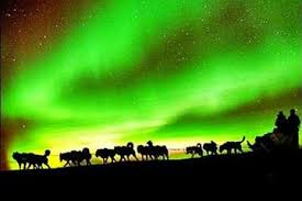 anchorage alaska northern lights tour northern lights tours in alaska recommendations for tours trips