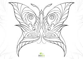 printable coloring pages adults butterfly coloring pages for adults butterfly coloring pages adults